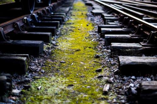 treinblog