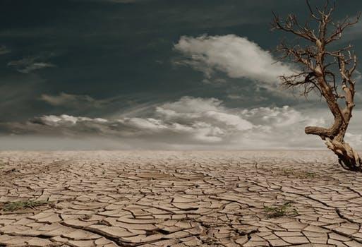 woestijn blog klimaattop